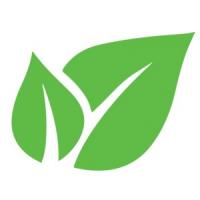 Firma De Curatenie Timisoara - Pro Cleaning, Timisoara